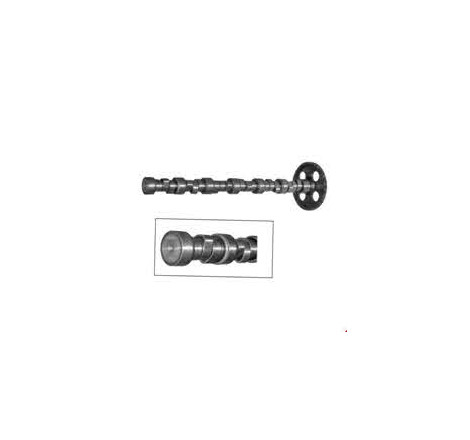 CAMSHAFT WITH GEAR